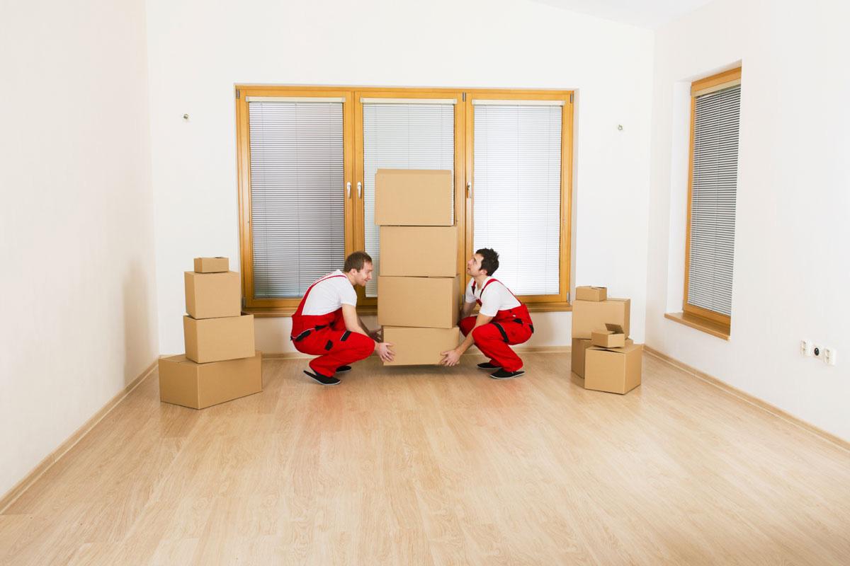 Aris-Export-International-Full-Services-Moving